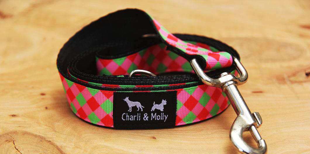Red and Green Dream Dog Lead