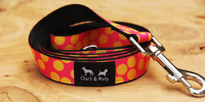 Dots of Mystery Dog Lead