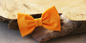 Canine Canary Bow Tie
