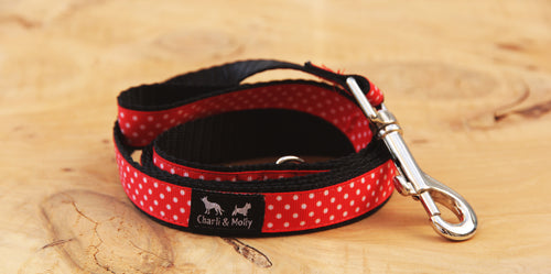 Mini Spots Dog Lead