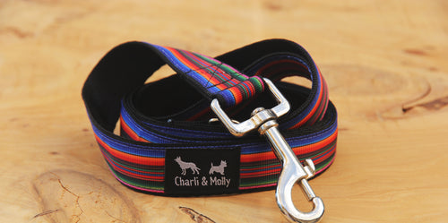 Paul's Stripes Dog Lead