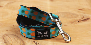 Pineapples Blue Dog Lead