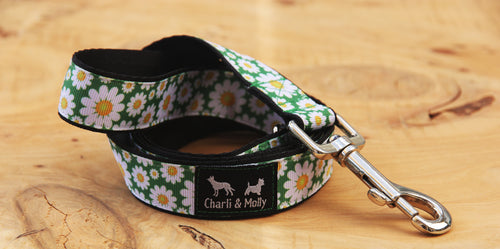 Daisy Meadow Dog Lead