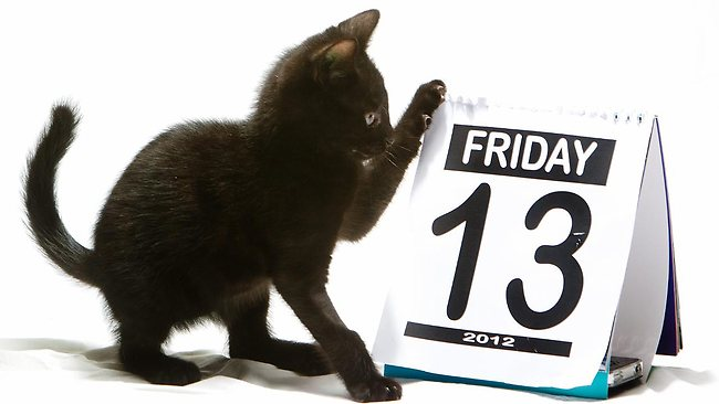Friday?!! 13?!!! BLACK CATS??!!!! Oh no!