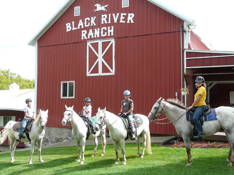Get into the camping spirit at Black River Farm & Ranch Camp!