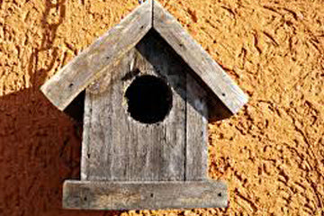 Woodworking just might build a little birdhouse in your soul!