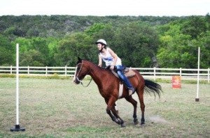 Go horseriding at Heart O' the Hills!