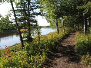 Always inviting, hiking trails are great means of exercise and mental health!