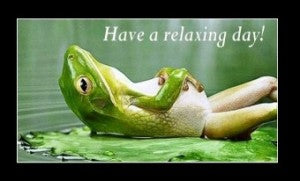 Have a relaxing day, like a frog in a bog!