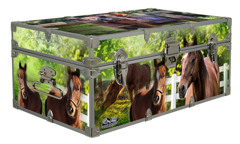 Designer Trunk - Saddle Up - 32x18x13.5""