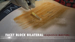 FACET BLOCK BILATERAL Video Still