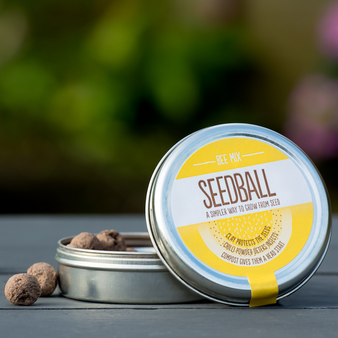 Bee Mix Seedball
