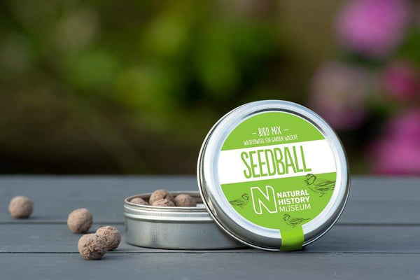 Bird Mix seedball