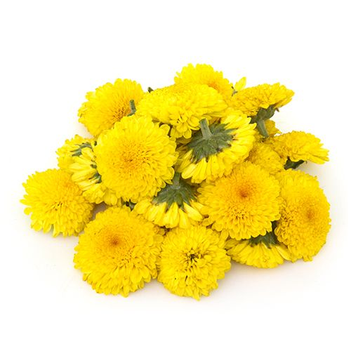 Chrysanthemum (Shevanti),200g