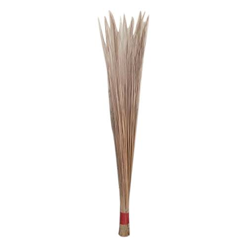 Eco Friendly  Coconut Broom Pack Of 2