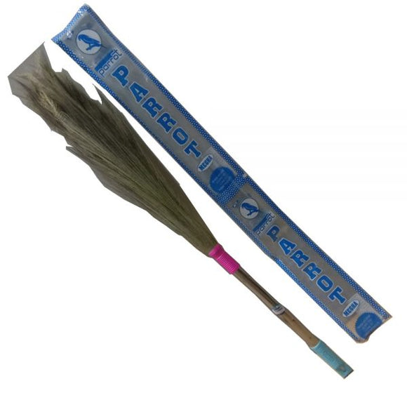 PARROT MEGHA BROOM STEEL HANDLE