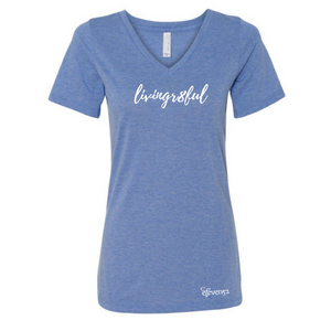 WOMEN'S RELAXED JERSEY SHORT SLEEVE V-NECK TEE BLUE