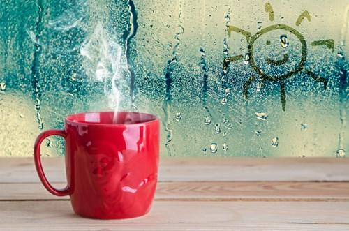 Don't Let Condensation & Humidity Ruin Your Christmas