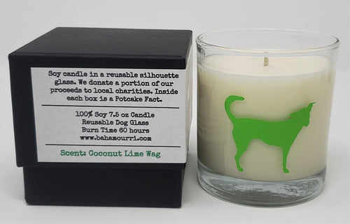 The Potcake Candle - Coconut Lime Wag