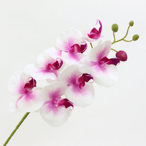 Artificial Real Touch Butterfly Orchid Flowers For Wedding Decorations