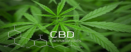 Natural Hemp CBD for Beginners - btn-hemp