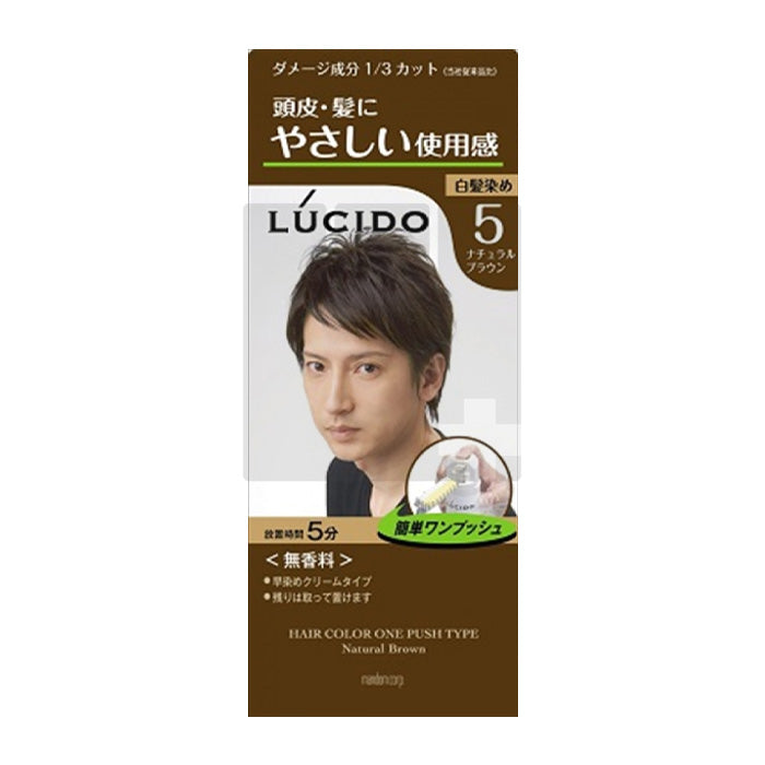 LUCIDO HAIR COLOR ONE PUSH TYPE NATURAL BROWN (BOX)