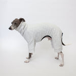 italian greyhound standing in kuvfur dog pajamas tracksuit jogger grey