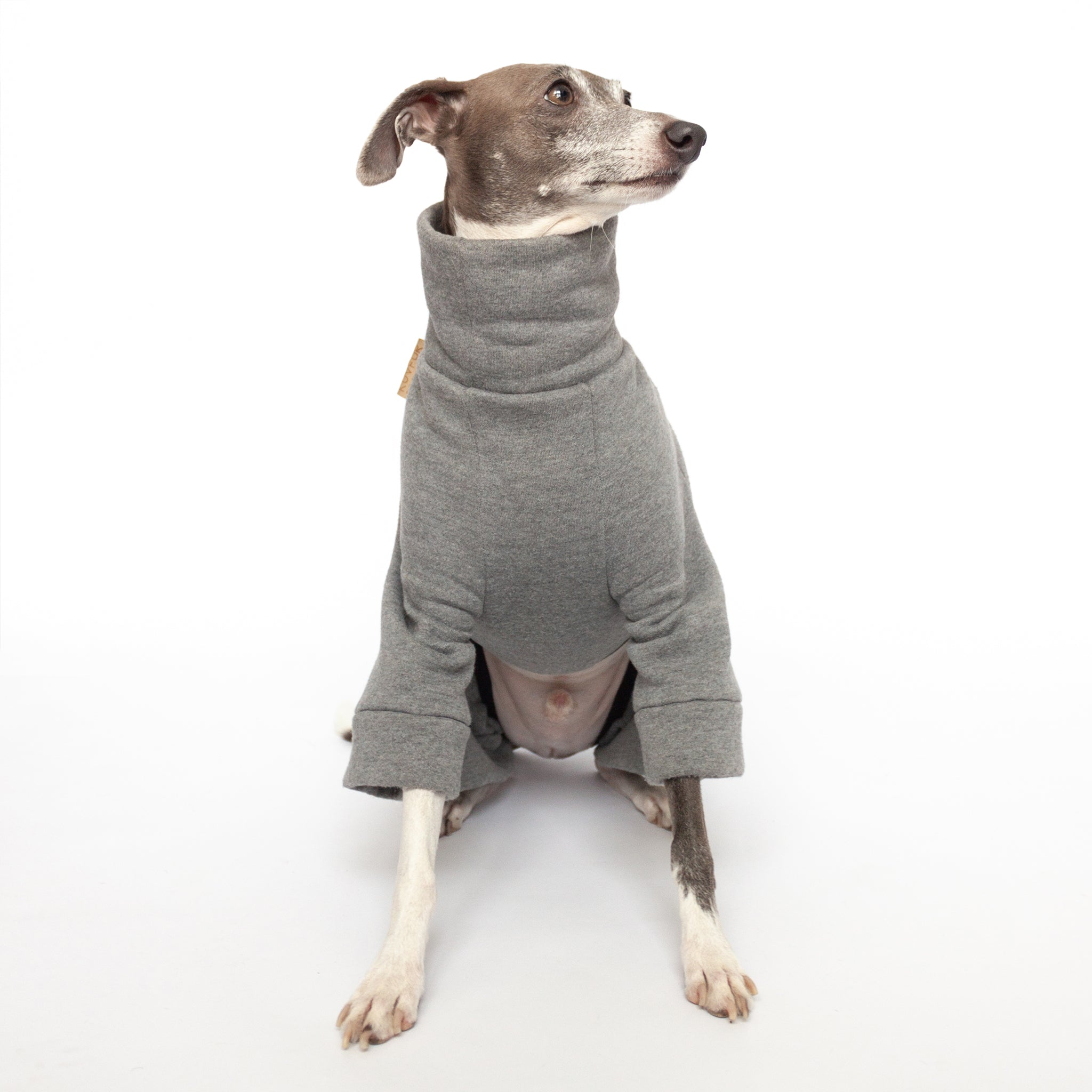 Tracksuit Dog Onesie - Mid Grey