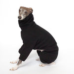 italian greyhound sitting in kuvfur fleece black dog onesie