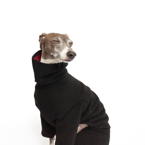 italian greyhound in kuvfur fleece dog onesie black turtle neck
