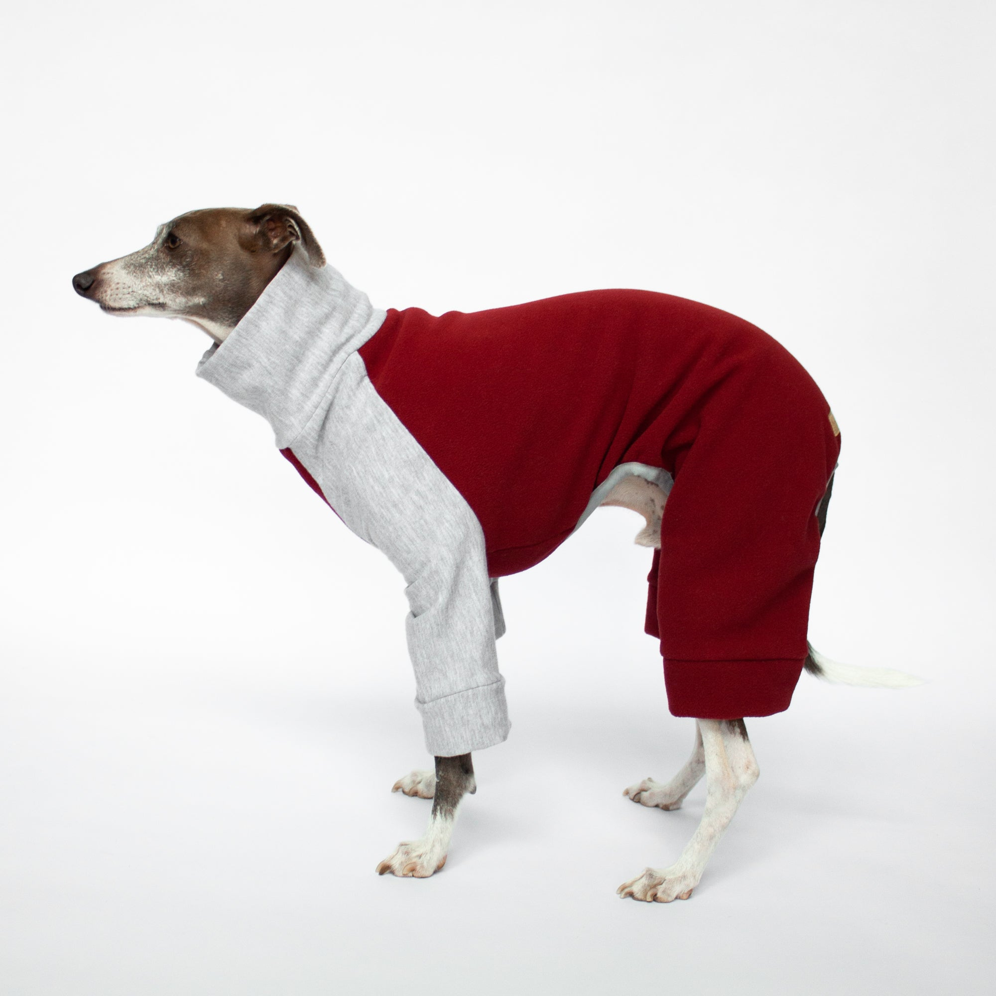 italian greyhound standing in red and grey fleece dog pajamas