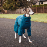Fleece Dog Onesie - Teal