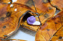 Load image into Gallery viewer, Another angle of  Handmade dinnerware, Leaves and a purple Snail