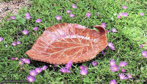 Another angle of  Handmade dinnerware, Rhubarb leaf bowl, brown color