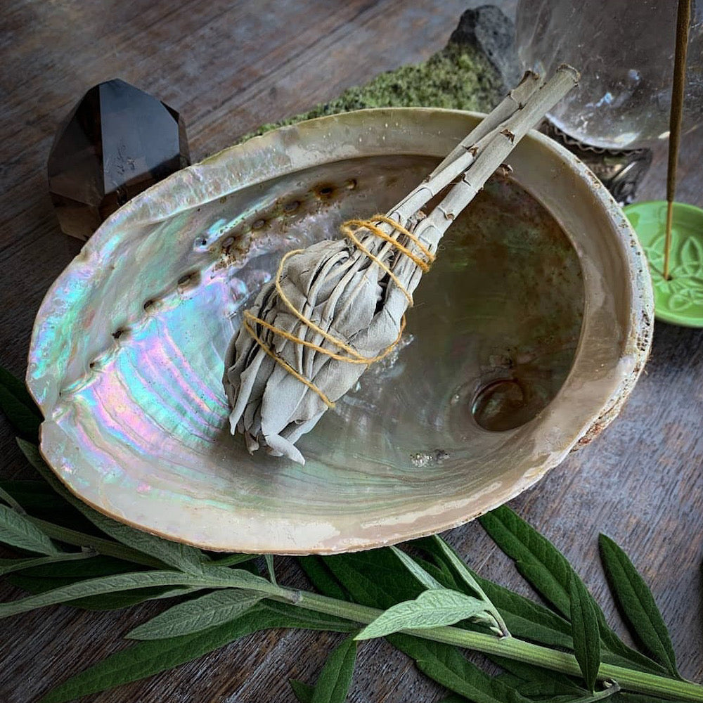 Shell smudging bowl with white sage bundle