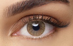 5 Day - Aquarella Sienna Brown Contact Lenses