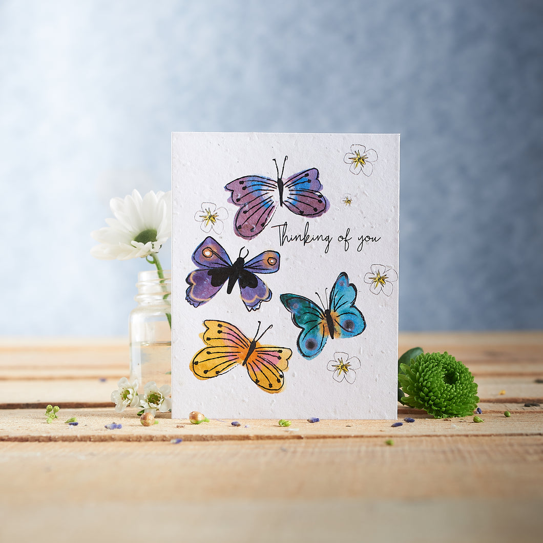 Thinking of You Plantable Seed card - Greetings Cards - Altruis Living