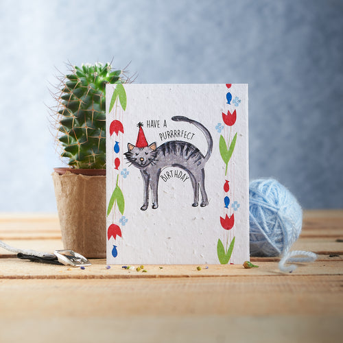 Have a Purrrfect Birthday Plantable Seed card - Greetings Cards - Altruis Living