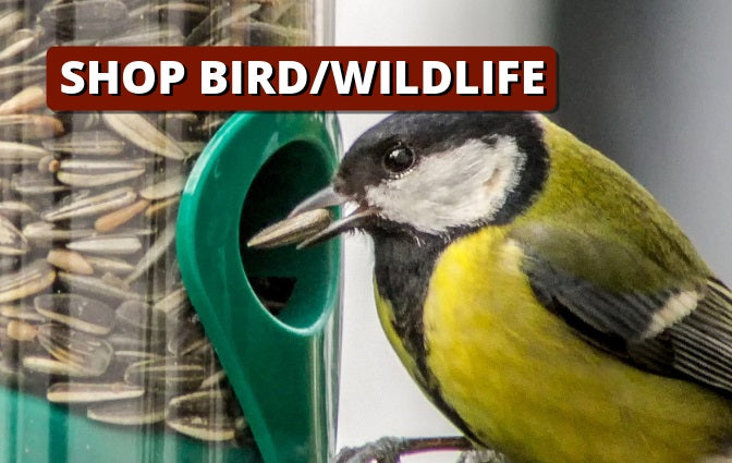 Shop Wildlife/Wild Bird