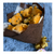 Brown Bear and Normal Ferrero Bouquet