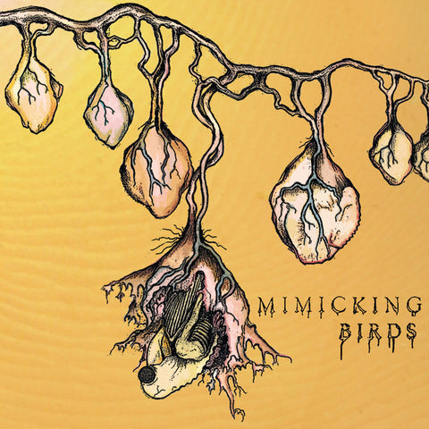 Music - Mimicking Birds s/t