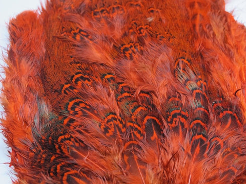 Nature's Spirit Ringneck Pheasant Rump Patch Orange