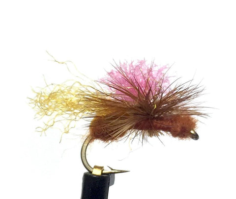 Bloom's Parachute Ant Cinnamon Size 12 Trout Fly