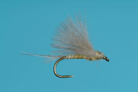 CDC PMD Biot Dun Harrop Mayfly Pale Morning Dun Dry Fly