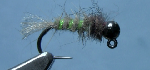 Bottom Bouncer Caddis Trout fly