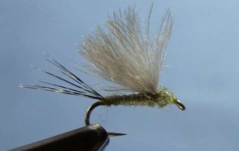 CDC Mayfly Dun Dry Fly