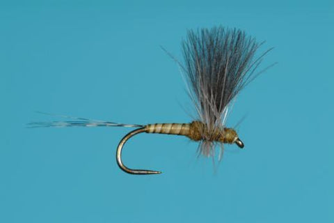 CDC Baetis Thorax Dun Dry Fly