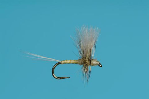 CDC PMD THORAX DUN dry fly