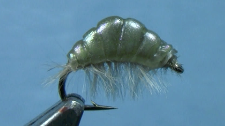 Chewee Scud Fly Pattern