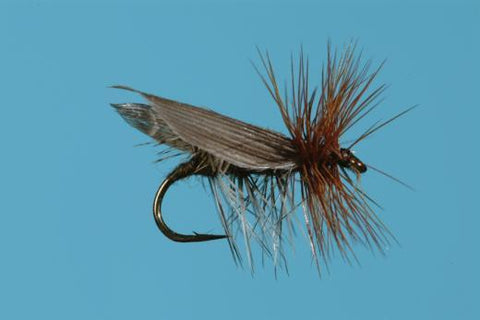 henryville special dry fly